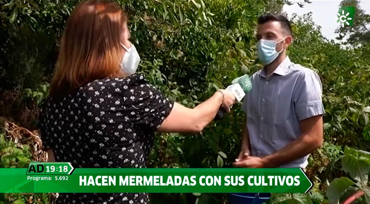 Entrevista Andalucía Directo - Canal Sur